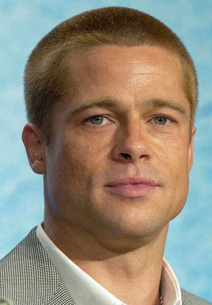 Brad Pitt au festival de Cannes de 2004