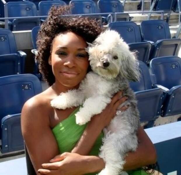 Venus Williams et son chien Harold