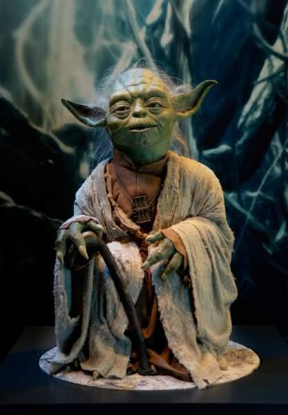 Quand 800 ans comme Yoda tu auras, la sagesse tu acquèreras