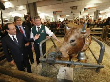 François Hollande au Salon de l'Agriculture 2014