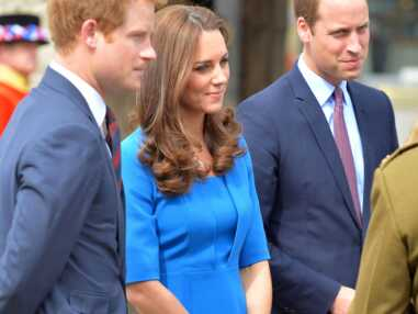 Kate, William et Harry dans un champ de coquelicots