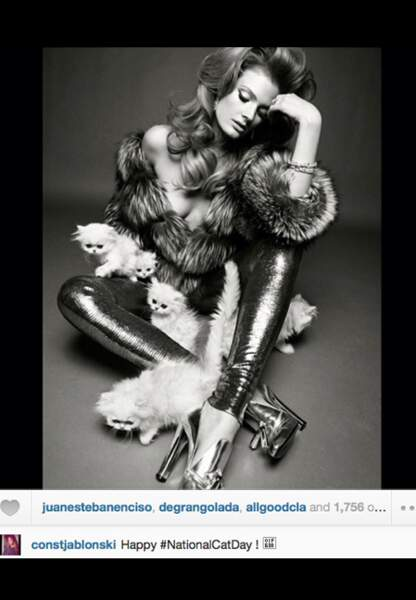 Constance Jablonski nous souhaite un Happy National Cat Day