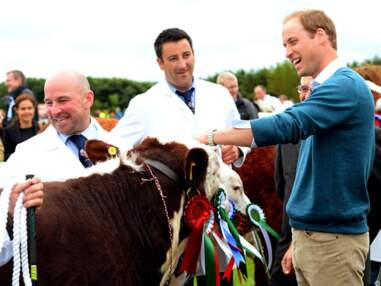 Le prince William à Anglesey