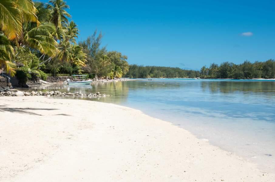Sublime plage de sable blanc à deux pas du Brando