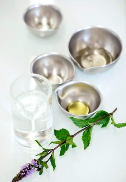 Cristaux de menthe, hydrolats et huile essentielle de menthe poivrée sont essentiels pour cette formulation.