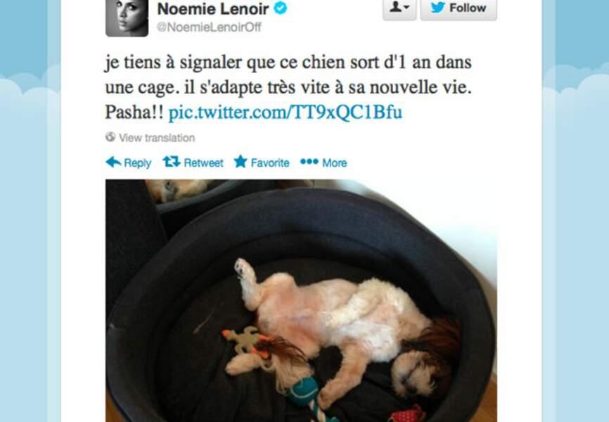 Noémie Lenoir a un nouvel ami