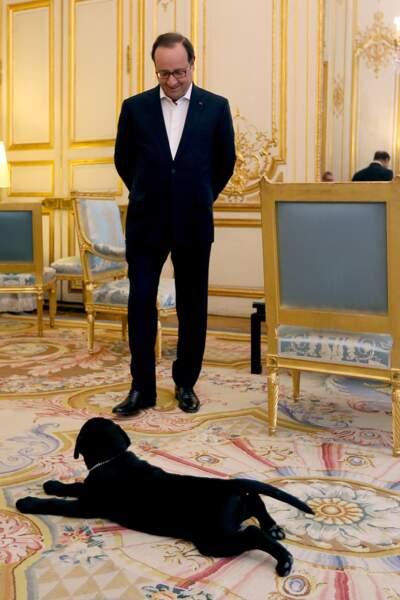 François Hollande et Philae