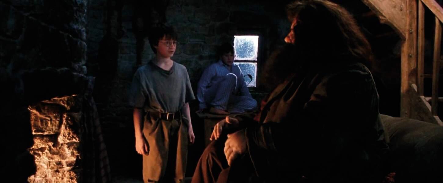 Harry Potter à l'école des sorciers ( 2001)