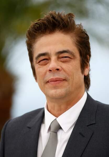 Benicio Del Toro se charge de la voix américaine