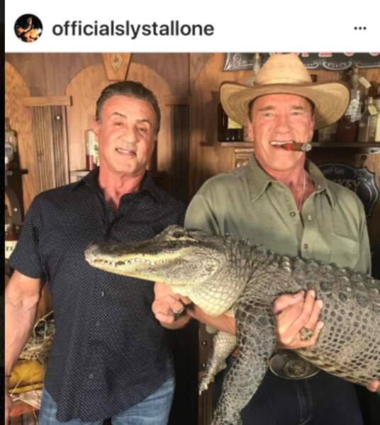 Sylvester Stallone et Arnold Swarzenagger