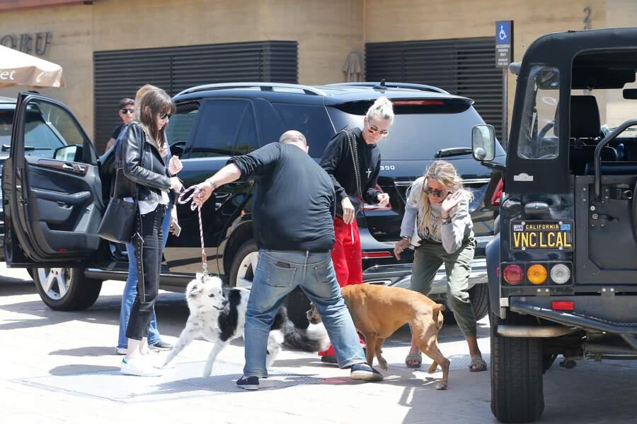 Petit incident entre Cheyenne, la chienne de Johnny, et celle de Christina.
