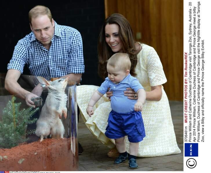 Prince George, au zoo Taronga de Sidney (le 20 avril 2014)