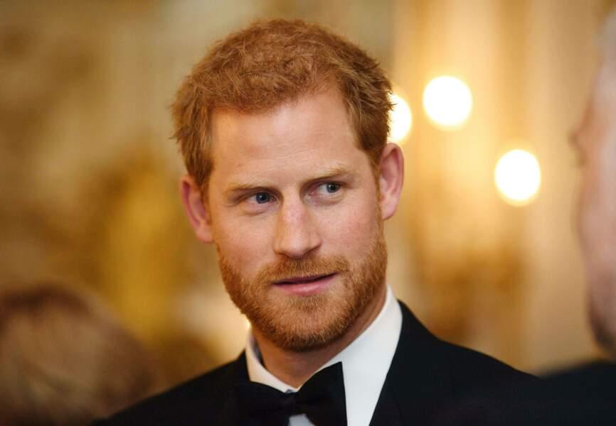 """Dans son discours, Harry a déclaré que Diana """"avait le devoir de mettre en lumière ces gens et leurs problèmes."""""""