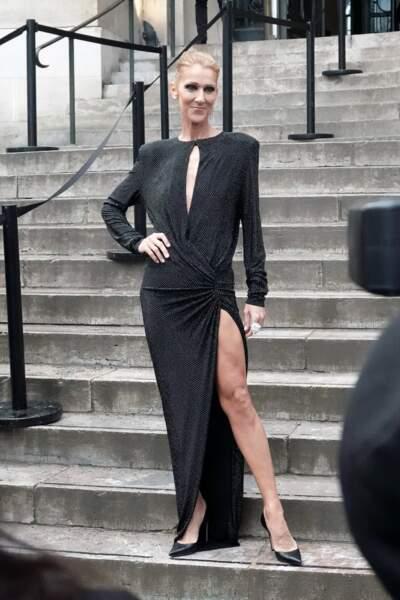 Céline Dion sur les marches du Grand Palais