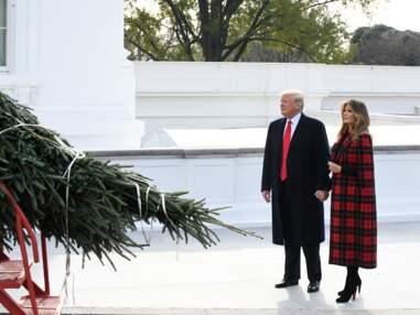 PHOTOS - Melania Trump, la First Lady étincelante devant l'arbre de Noël de la Maison Blanche