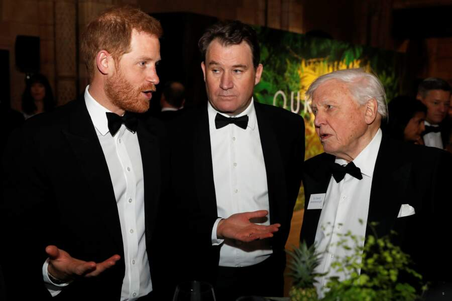 Le prince Harry discute avec David Attenborough à l'avant-première de Our Planet, à Londres, le 4 avril 2019.