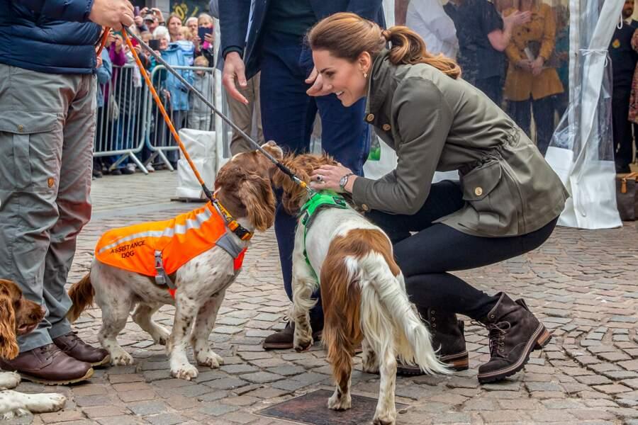 Kate Middleton a retrouvé trois épagneuls avec qui elle a fait connaissance il y a un mois à Buckingham.