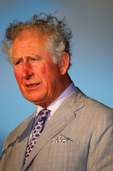 Le vent et l'humidité ont eu raison de la coupe de cheveux du prince Charles lors de son discours à Sainte-Lucie