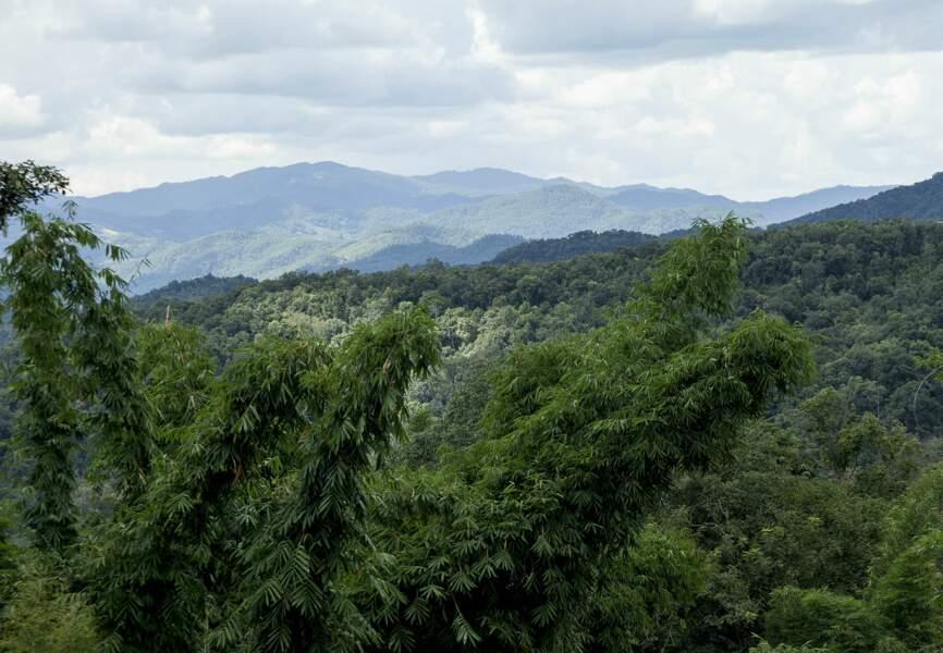 Tout se passe au Yunnan, terre sublime et préservée au sud-ouest de la Chine.