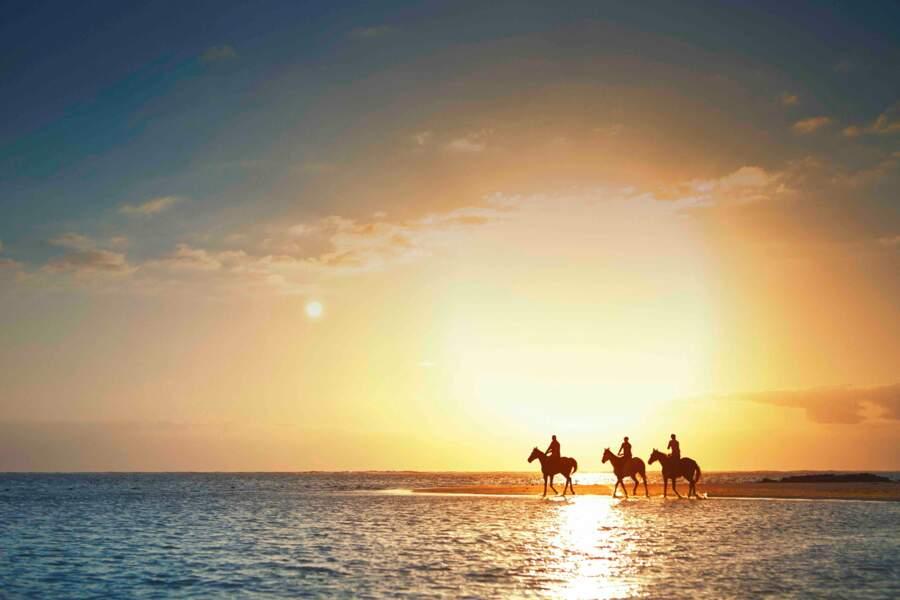De la plage du LUX* Belle Mare à l'île Maurice, des randonnées à cheval sont organisées.