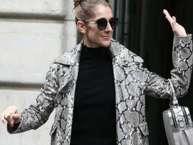Photos - Céline Dion en total look python à Paris