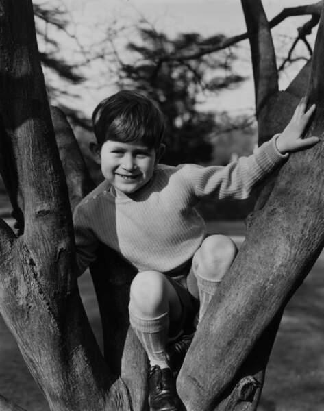 Le prince Charles photographié dans les jardins du Royal Lodge à Windsor en 1954