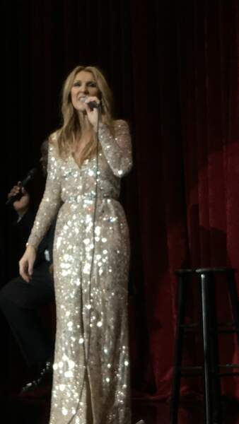 Malgré l'émotion, Céline Dion a assuré le show