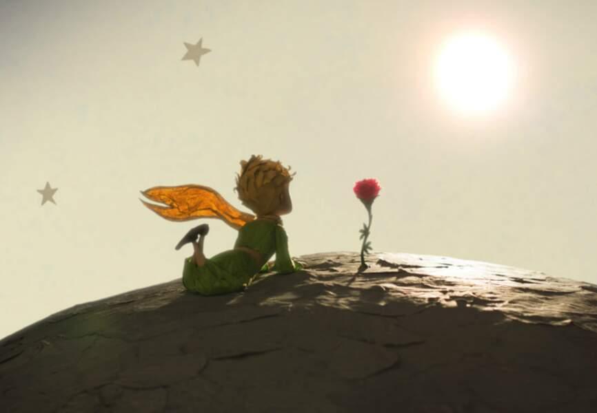 Et pour conclure: le rôle de la rose...