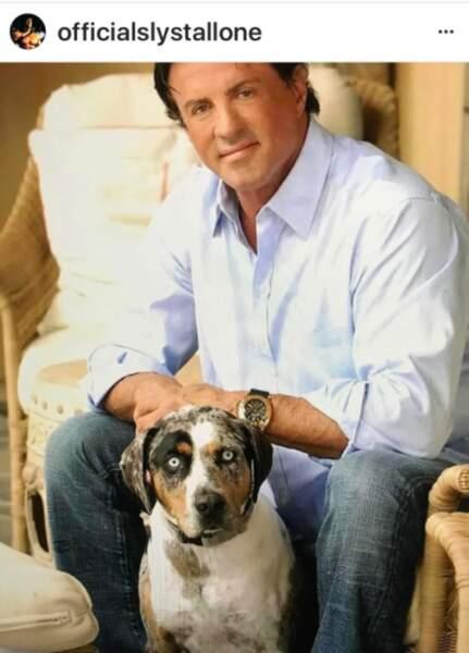 Silvester Stallone et son chien Spooky