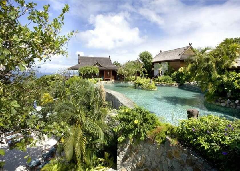 Sublime piscine dans le jardin de la villa de David Bowie à l'île Moustique