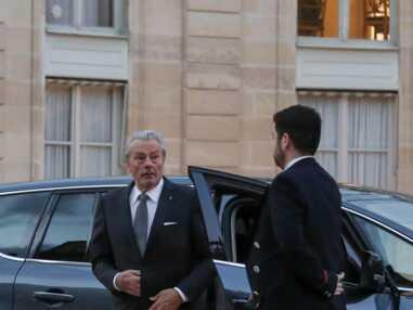 PHOTOS - Quand Alain Delon fait le show et Hélène Rolles très attendue au dîner d'Etat à l'Elysée avec le président chinois