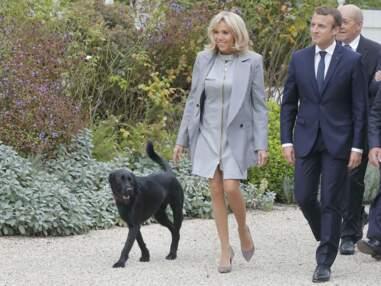 Déséquilibrée par Nemo, Brigitte Macron a manqué de chuter devant ses invités et les photographes.