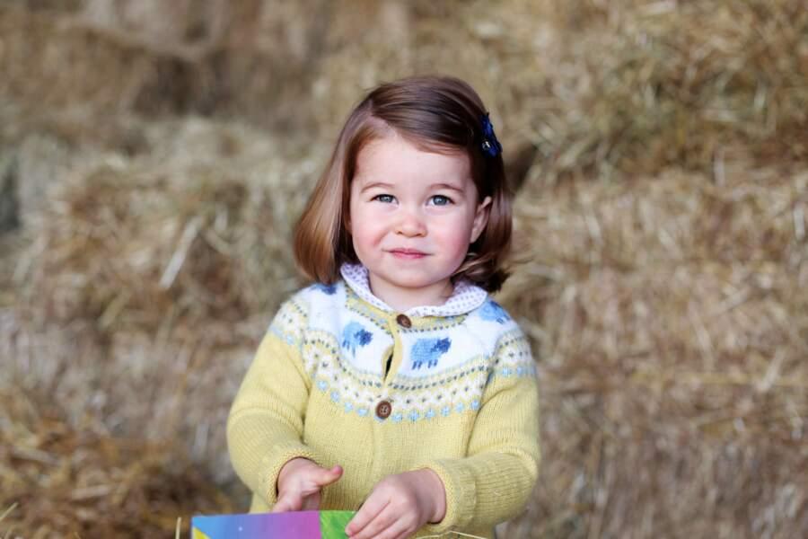 Portrait officiel de la princesse Charlotte pour célébrer ses deux ans, le 2 mai 2017