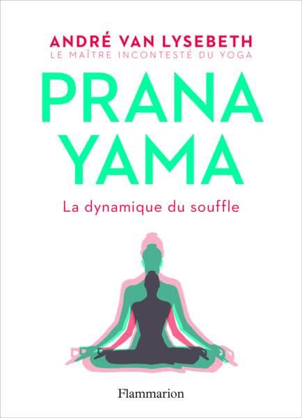 Prana Yama, André Van Lysebeth.