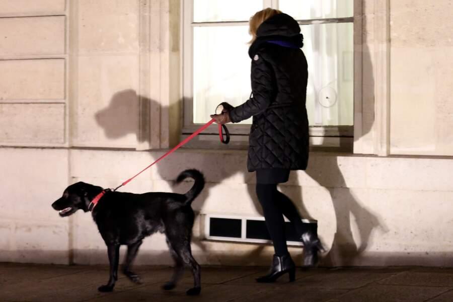 Une bonne promenade pour Nemo et Brigitte Macron ce 20 novembre
