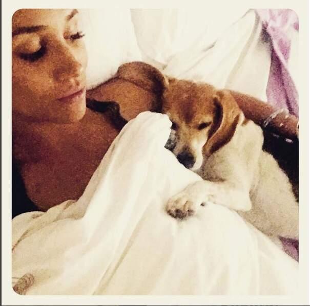 "Meghan Markle présente son ""boy"" Guy, un adorable beagle"