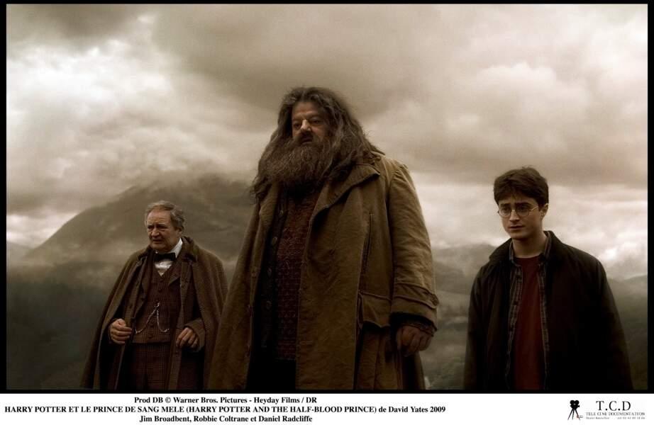 Harry Potter et le Prince de sang mélé (2009)
