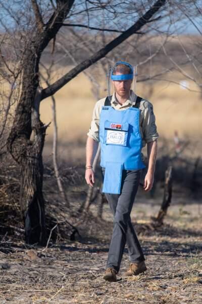 Le prince Harry visite un champ de mines