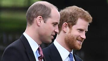 Pour l'enterrement de vie de garçon de Harry, le prince William promet une fête très sage