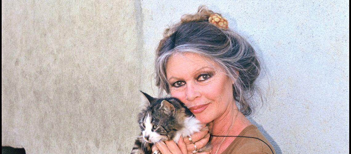 Brigitte Bardot très déçue d'Emmanuel Macron: ses deux lettres ouvertes sont restées sans réponse