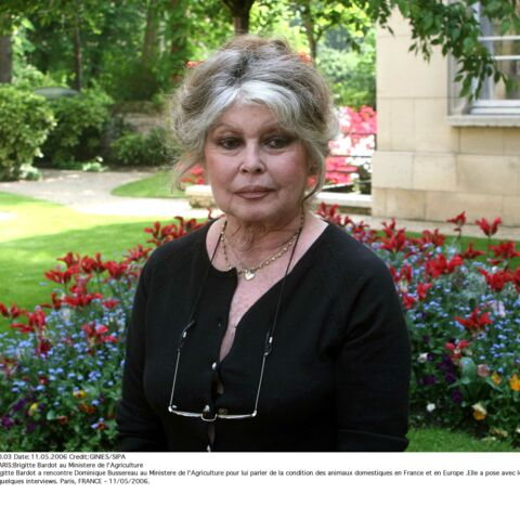 Brigitte Bardot: comment le personnage de Blanche Neige a transformé sa vie