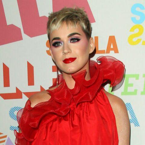 Maquillage: découvrez quel animal est la star de la ligne de maquillage  de Katy Perry
