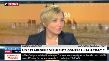 """VIDEO – """"Laeticia Boudou"""": l'avocate de David Hallyday se défend de tout «manque de respect»"""