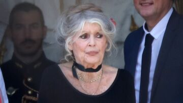 La petite phrase inattendue d'Emmanuel Macron en accueillant Brigitte Bardot à l'Elysée