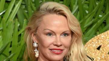 Quotidien: les exigences de Pamela Anderson (Danse avec les stars) pour venir dans l'émission de Yann Barthès