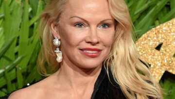 PHOTO – Pamela Anderson: sa pose lascive et son décolleté plongeant affolent les internautes