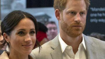 La famille de Meghan Markle et du prince Harry s'agrandit: découvrez le nouveau venu