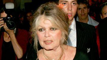 Brigitte Bardot «se réjouit» du départ de Nicolas Hulot: «Il n'était pas du tout à sa place»