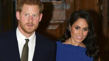 Meghan Markle, très gênée: sa sœur compare le prince Harry à un animal de compagnie, le jour de ses 34 ans