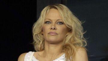 Pamela Anderson et Dorothée réunies dans un même projet